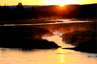 Madison River Sunrise - Yellowstone Park