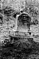 Cemetery at Elkhorn Ghost Town